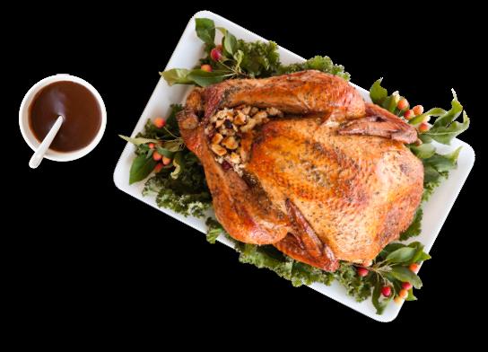 Turkey and Gravy
